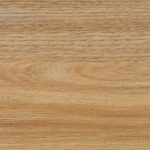 Spotted Gum