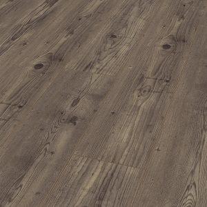Titan Pine